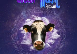 doctor music festival pic 1