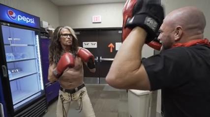 steven tyler boxeo