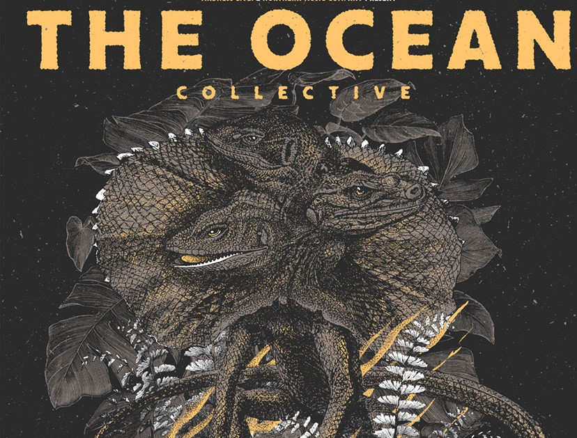 the ocean collective pic 1